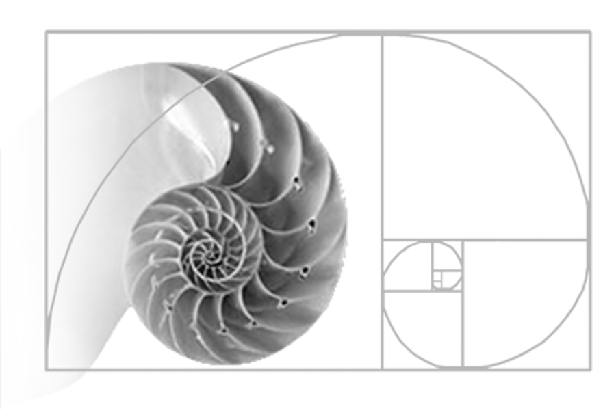 Golden ratio, Golden spiral, Fibonacci sequence and nature all together